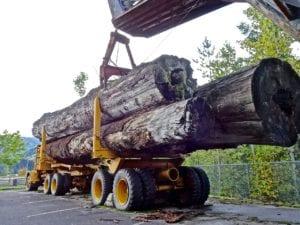 truck lumber cargo